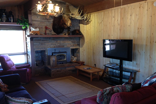 Eagle Cabin Living room